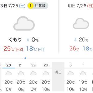 今年は冷夏?