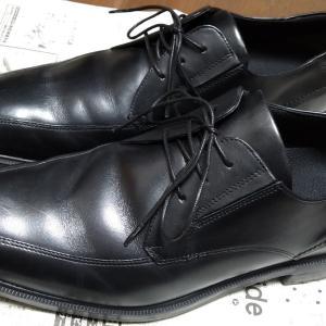 テクシーリュクスは「革靴風スニーカー」?「スニーカー風革靴」?実際に履いた感想。もっとスニーカーに寄せてくれてもいいのよ?