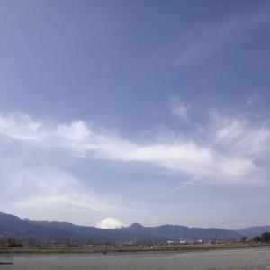 20/03/13 酒匂川