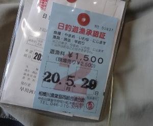 20/05/29 中津川(宮ヶ瀬ダム下本流)