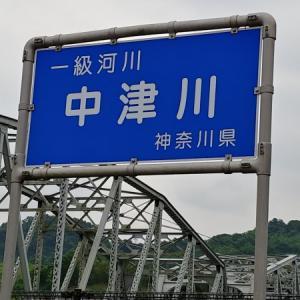 20/06/18 中津川(宮ヶ瀬ダム下本流)