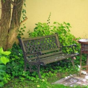 庭にはまだ紫陽花