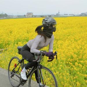 春の菜の花パン祭りサイクリング