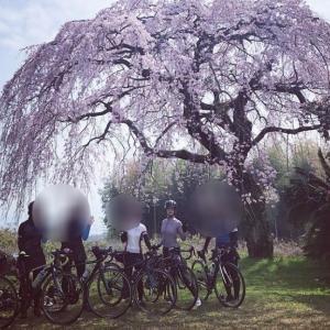 女性だけで花を愛でるサイクリング