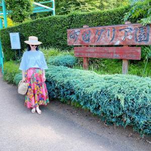 ダリア好き女子の眼福パラダイス!夏真っ盛りの「町田ダリア園」へお出掛け♪