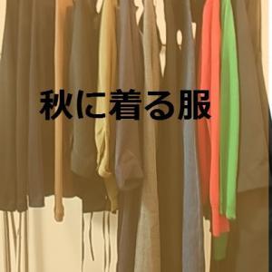 ミニマリスト志向・無印ONE-ALL(ワンオール)他・秋に着る服13枚