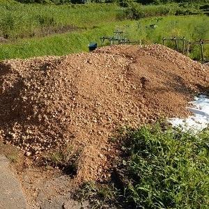 キノコ採り諦め農作業