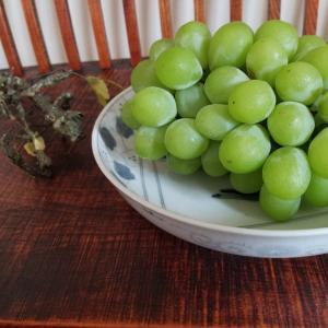 夏のフルーツが出回ってきました