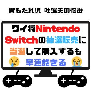 ワイ将Nintendo Switchの抽選販売に当選して購入するも早速飽きる