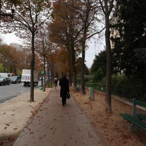 パリ マルモッタン美術館 公園に囲まれた瀟洒な美術館