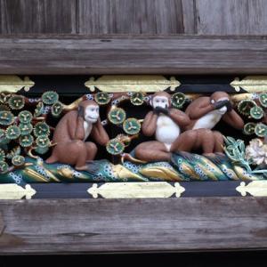 赤ちゃんざるの表情はキユート 東照宮 日光 栃木県