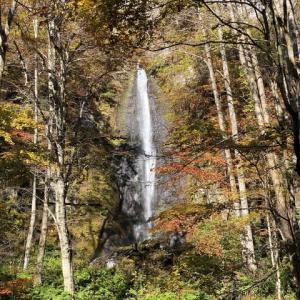 滝や強い流れが魅力を増します 奥入瀬渓谷 青森県