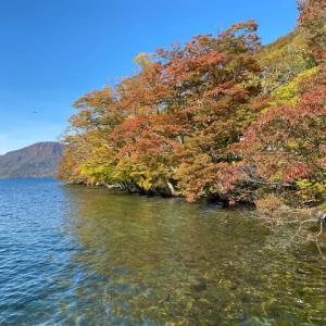 奥入瀬渓谷から十和田湖の紅葉は 青森県