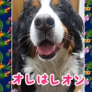 広島つけ麺🍜\(◎o◎)/