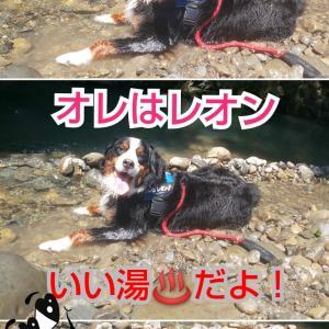 犬鳴山温泉紀行その②🙏💖