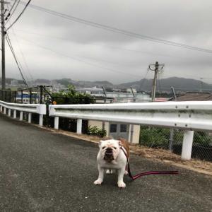 台風接近。