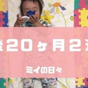定期身体測定1歳8ヶ月(生後20ヶ月2週目)