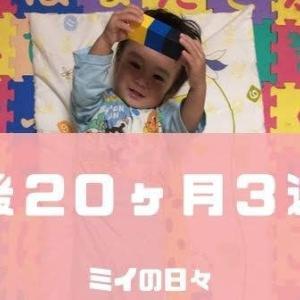 定期身体測定1歳8ヶ月(生後20ヶ月3週目)