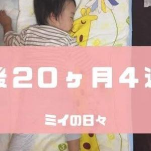 定期身体測定1歳8ヶ月(生後20ヶ月4週目)