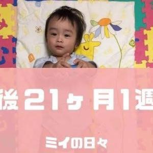 定期身体測定1歳9ヶ月(生後21ヶ月1週目)