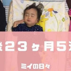 定期身体測定1歳11ヶ月(生後23ヶ月5週目)