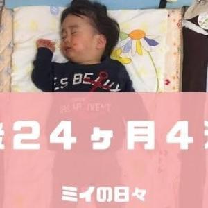 定期身体測定2歳0ヶ月(生後24ヶ月4週目)