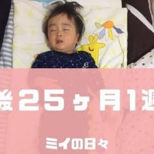 定期身体測定2歳0ヶ月(生後25ヶ月1週目)