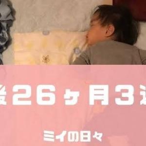 定期身体測定2歳2ヶ月(生後26ヶ月3週目)