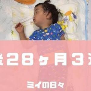 定期身体測定2歳4ヶ月(生後28ヶ月3週目)