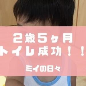 【2歳5ヶ月】トイレ成功!トイレトレーニングの成果!