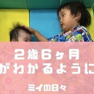 2歳の子どもが左右を覚えた方法