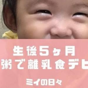 【生後5ヶ月】長女が10倍粥で離乳食デビュー