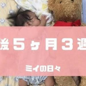 長女の定期身体測定結果生後171日(生後5ヶ月3週目)