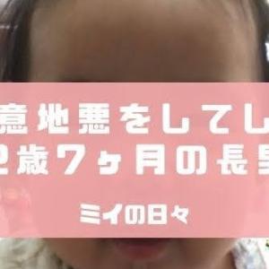 妹に意地悪をする2歳7ヶ月の長男