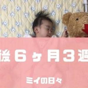 長女の定期身体測定結果生後199日(生後6ヶ月3週目)
