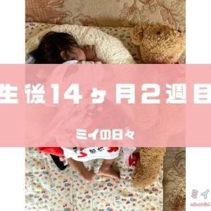 長女の定期身体測定結果生後428日(生後14ヶ月2週目)