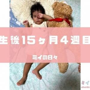 長女の定期身体測定結果生後470日(生後15ヶ月4週目)