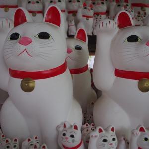 招き猫寺の溢れかえる猫愛 ~豪徳寺~