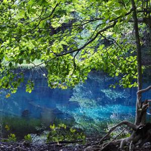 知る人ぞ知る青い池 ~丸池様~