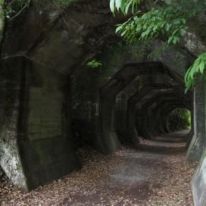 ミステリアスな山中の産業遺構 ~八角トンネル~