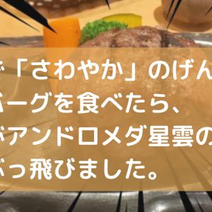 静岡で「さわやか」のげんこつハンバーグを食べたら、 理性がアンドロメダ星雲の彼方までぶっ飛びました。