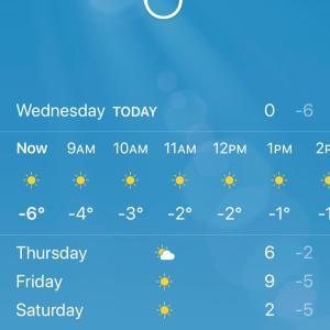 真冬のニューヨークに戻りましたがな。