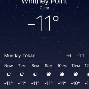 コーネル大学 は雪の中。ニューヨークは本格的な冬です。