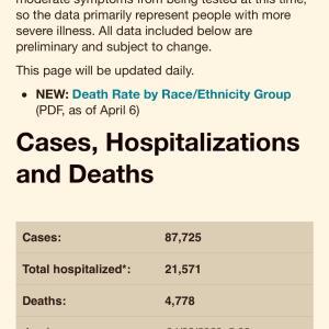 データでみるニューヨーク感染者数と死者数 分析しました。Boomer Killer に勝とう。