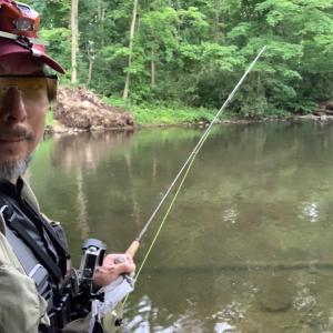 ブラウントラウト。濡れながら釣りました。