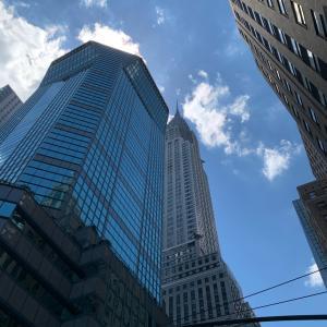 ニューヨーク大便物語。人は大便踏みを回避する能力がある。