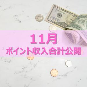 11月副収入金額公開♥今月はなんと○万越え!!