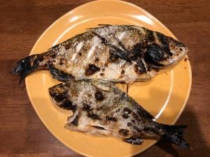 黒鯛の塩焼き