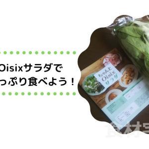 ちゃんとOisixサラダで積極的に野菜を!サラダの概念が変わるレシピもあり