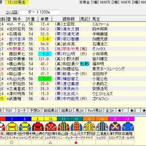 第12回カペラステークス(G3) 2019 予想